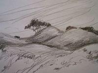 pencil drawing, drawing